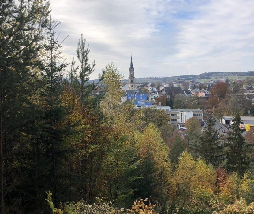 Baumbestattungen in Naila - Ausblick auf die Stadt