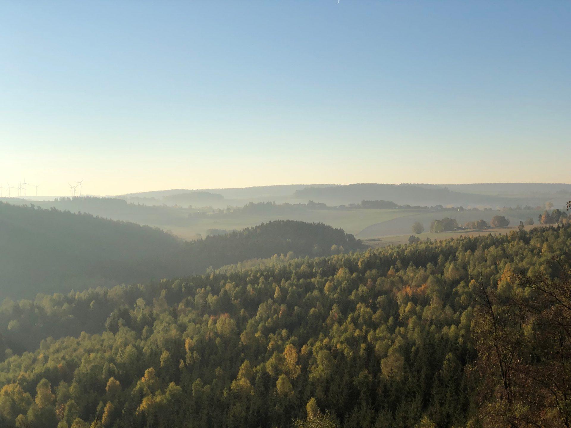 Herzlich Willkommen im Wald- und Naturfriedhof Frankenwald <br><span> Ein interkommunaler Bestattungswald</span>